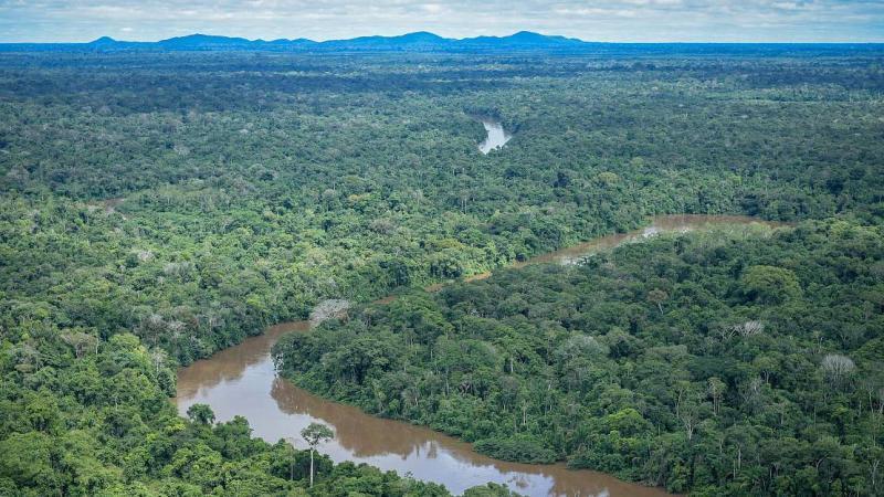 L'Amazonie, convoitée par l'agrobusiness et l'industrie minière, en danger imminent avec l'élection de Bolsonaro