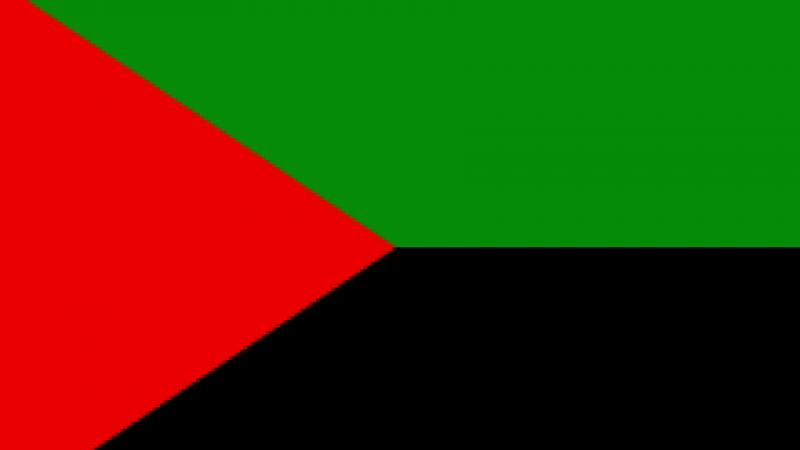 Un drapeau-emblème régional ou un drapeau national martiniquais ?