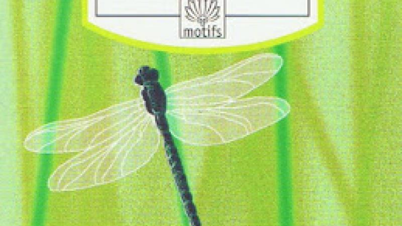 Raphaël Confiant : Mamzelle Libellule (1987, as Marisosé); trans. 1994