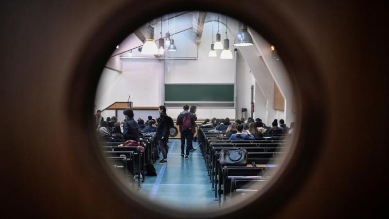 Sciences humaines : les jeunes chercheurs à l'épreuve du néolibéralisme académique