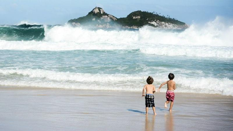 LES BRESILIENS IMPORTENT DE PLUS EN PLUS DE SPERME AMERICAIN POUR AVOIR DES ENFANTS BLANCS