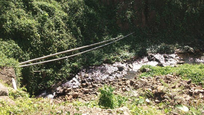 Défrichement illicite en Martinique : Gravillonord écope de 150 000 euros d'amende
