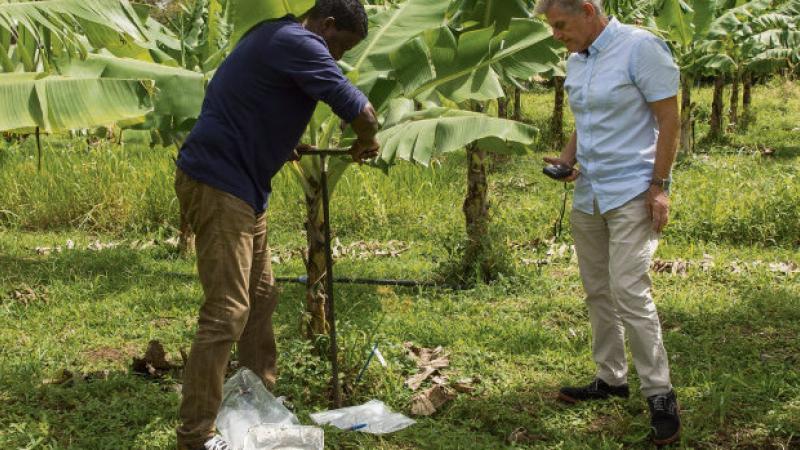 Antilles. Chlordécone, les victimes refusent d'oublier