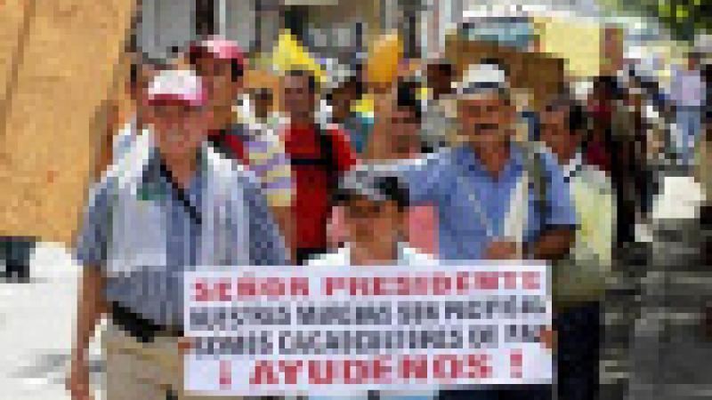 SOULEVEMENT DES AGRICULTEURS COLOMBIENS : LES SEMENCES SOUS LES FEUX DE L'ACTUALITE