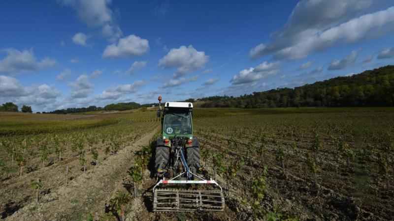 GLYPHOSATE: LE GOUVERNEMENT BRUXELLOIS PORTE PLAINTE CONTRE LA COMMISSION EUROPEENNE