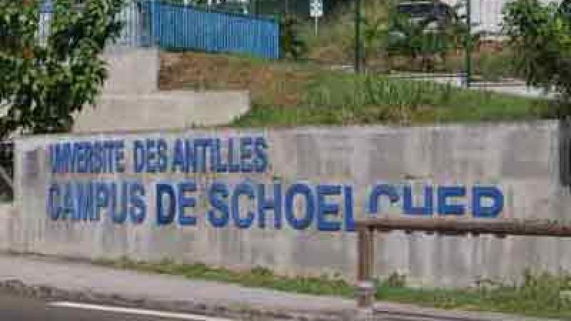 Manœuvres en vue de créer une université de la Martinique ?