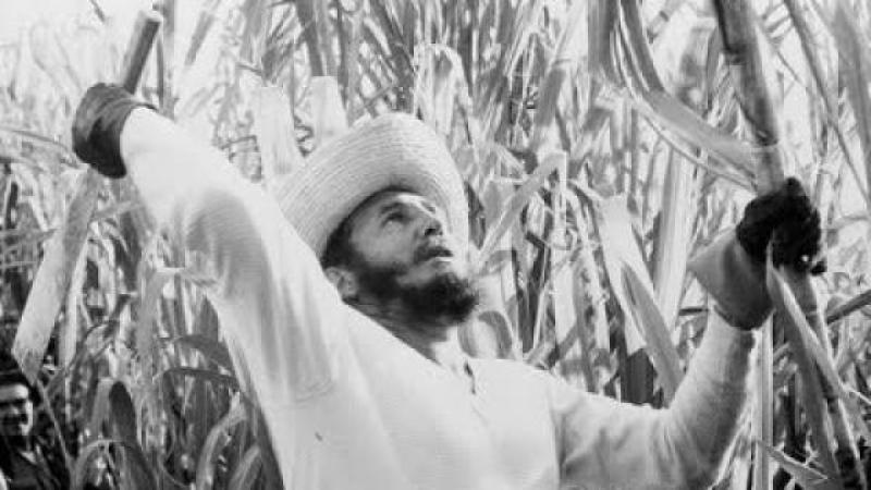 Fidel chapé-monté nan Galilé