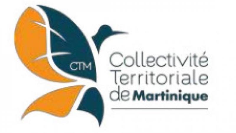 SUBVENTIONS CTM ATTRIBUEES A LA VILLE DE FORT-DE-FRANCE