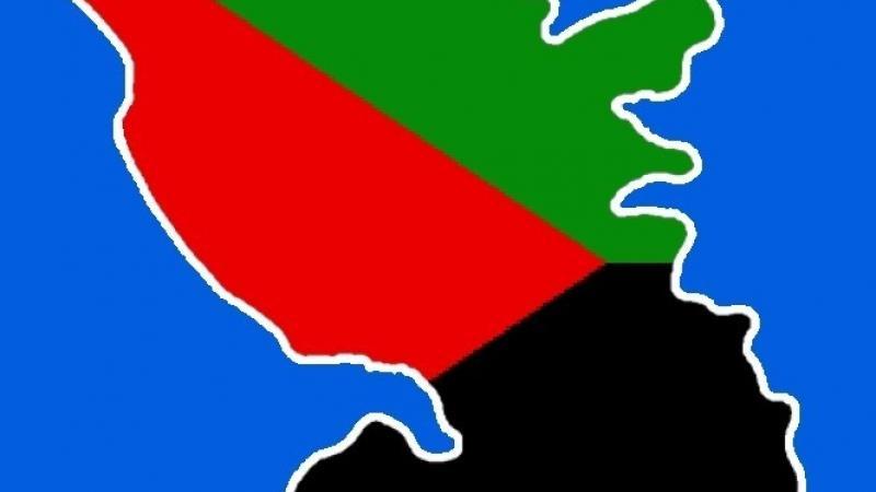 Drapeau rouge-vert-noir : à quel jeu joue le PPM ?