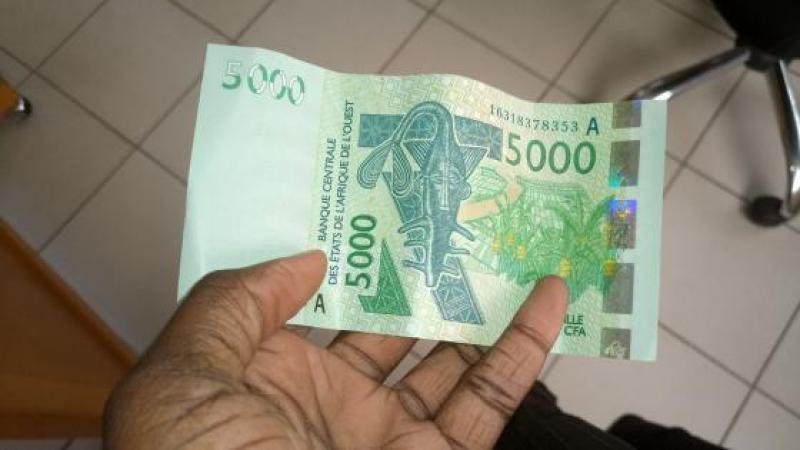 Le franc CFA ou la corde au cou des pays africains francophones