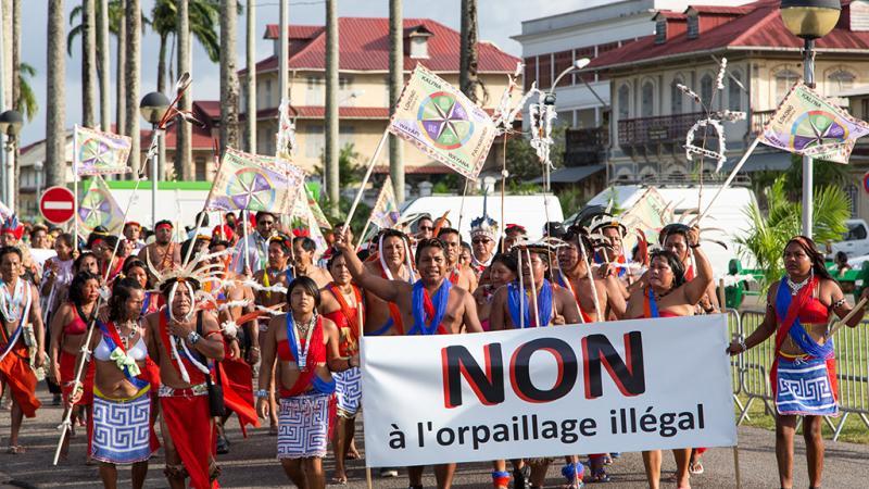 Guyane : Deux associations écolo triomphent en justice face au lobby minier