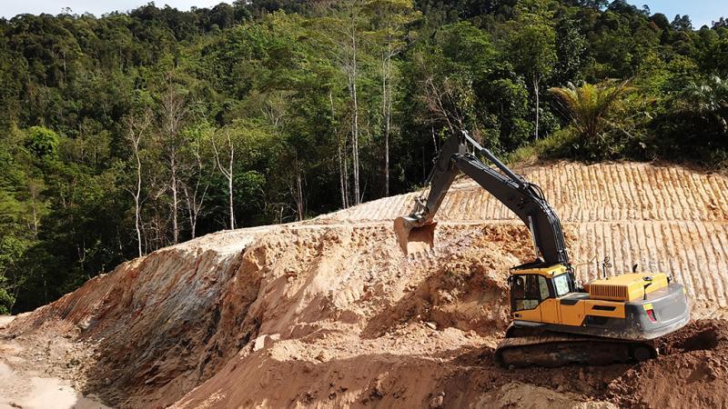 Guyane : une centrale à hydrogène va détruire 50 ha de forêt amazonienne avec la complicité de l'État français