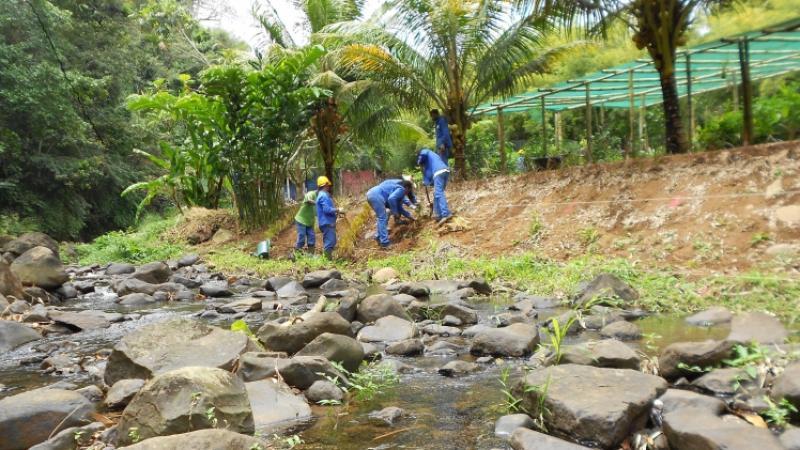 Parc Naturel de Martinique : Reprise des services depuis le 4 décembre 2017