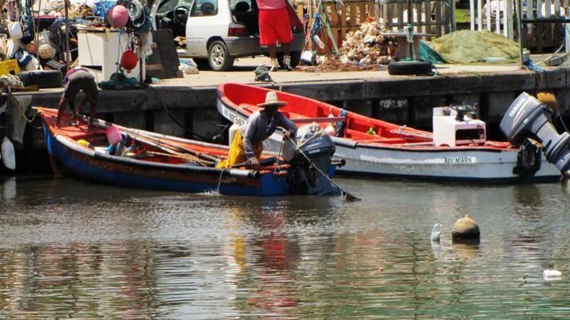 Parc Naturel Marin de la Martinique : hier contre, le Comité Régional des Pêches est pour aujourd'hui !
