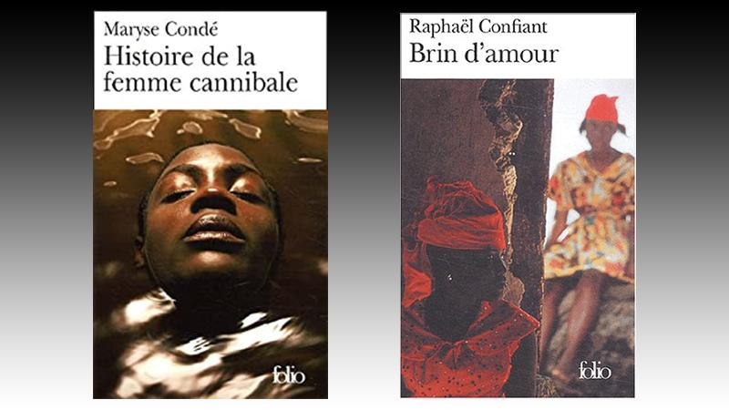 Des stéréotypes des hommes et des femmes noirs dans Brin d'amour et Histoire de la femme cannibale, entre continuité et désir de changement