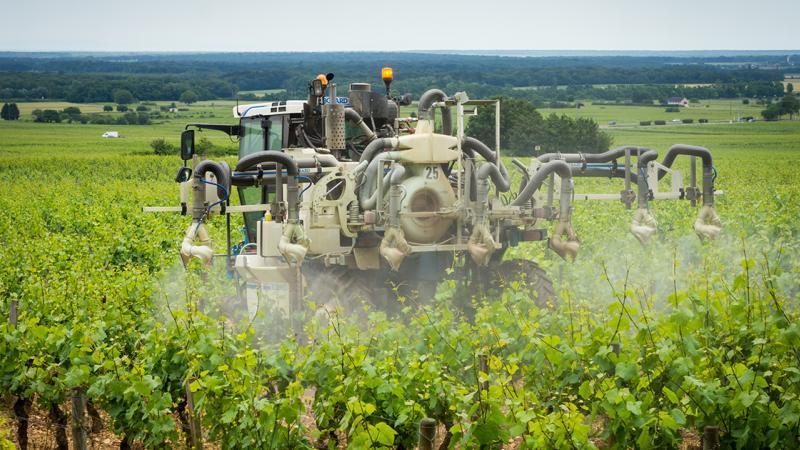 Les arrêtés municipaux pleuvent pour interdire l'usage des pesticides