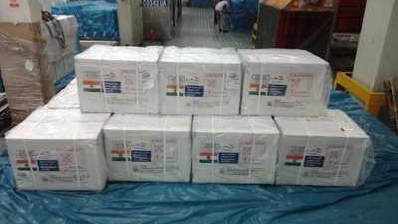 India Dispatches Coronavirus Vaccines To Barbados, Dominica