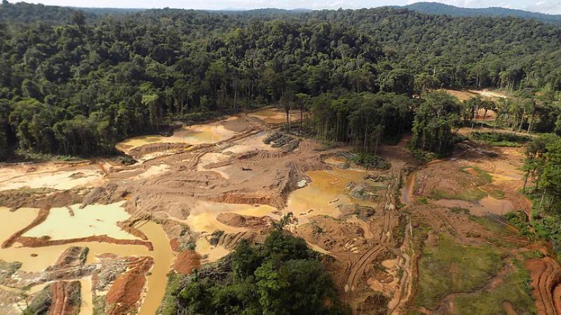 Montagne d'or en Guyane: c'est inédit, l'ONU accuse la France de non-respect des droits indigènes
