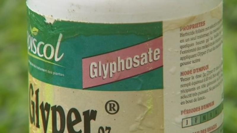 Chlordécone + glyphosate, un cocktail explosif dont nos députés se contrefoutent !