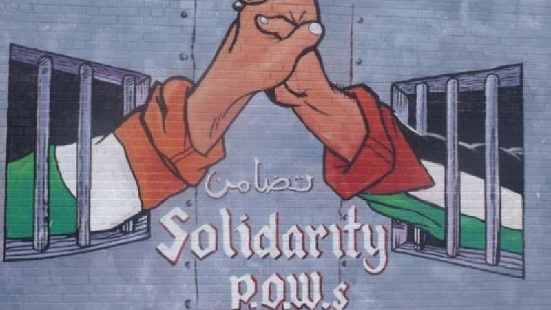 Le sénat irlandais vote l'interdiction des produits issus des colonies israéliennes