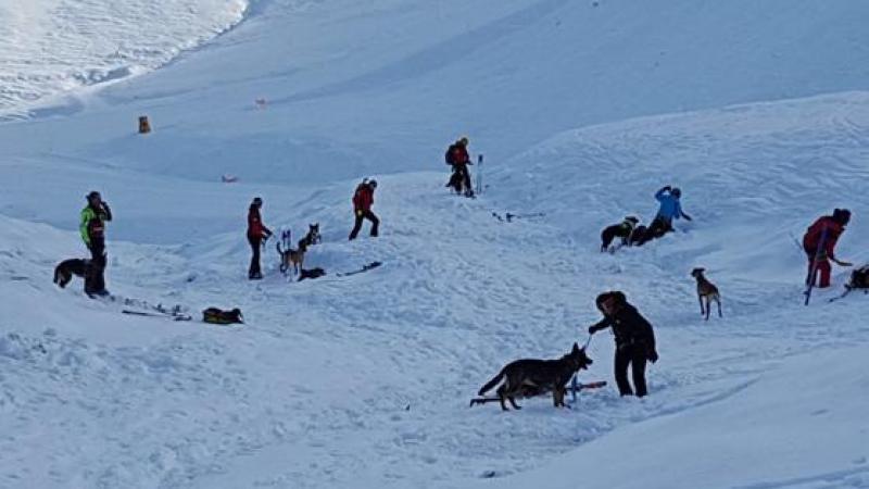 Maltempo, 5 migranti tentano passaggio in Francia nella neve e finiscono congelati