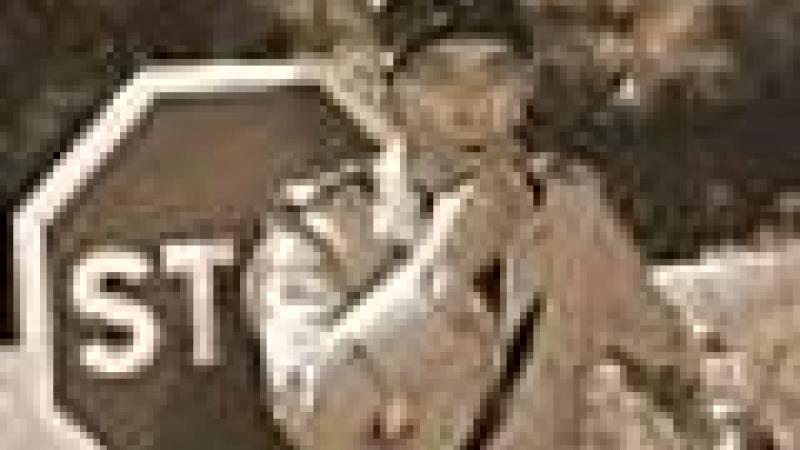 MARTINIQUE : LA CHASSE AUX SAINT-LUCIENS EST OUVERTE