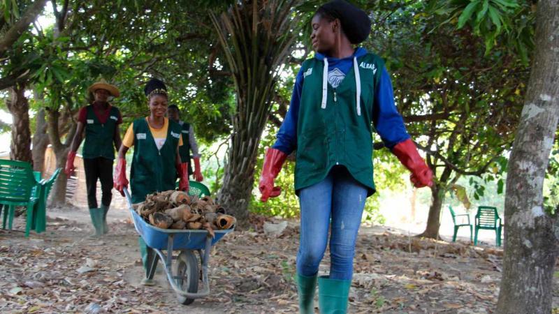 Au Togo, l'essor de fermes-écoles pour former les patrons de l'agroécologie de demain