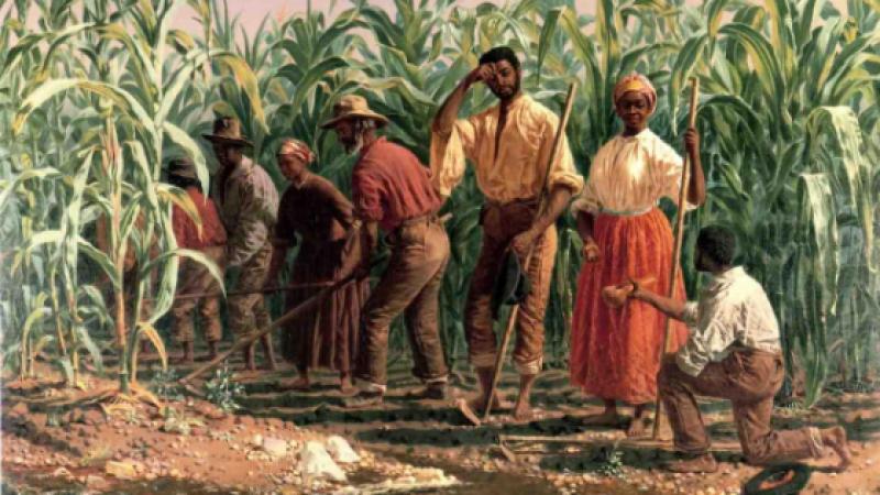 Guadeloupe et Martinique : les racines de la colère
