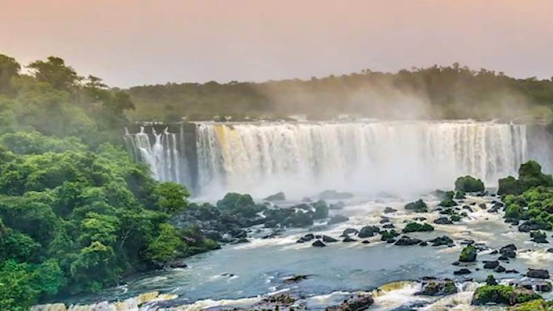 Jugée « non productive », la forêt amazonienne va être dévastée par le Brésil pour être urbanisée