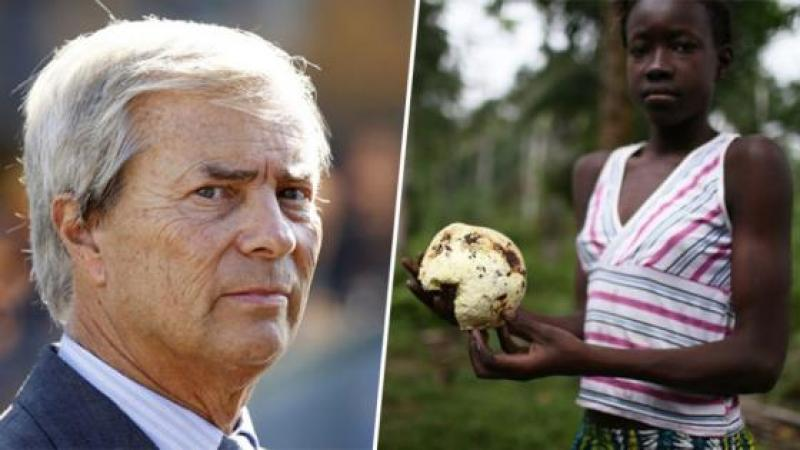 DEFORESTATION : GREENPEACE EPINGLE VINCENT BOLLORE