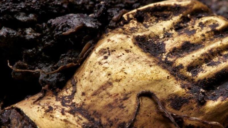 Archéologie : les trésors d'une civilisation précolombienne inconnue