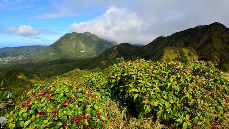 La Dominique : les Caraïbes au naturel