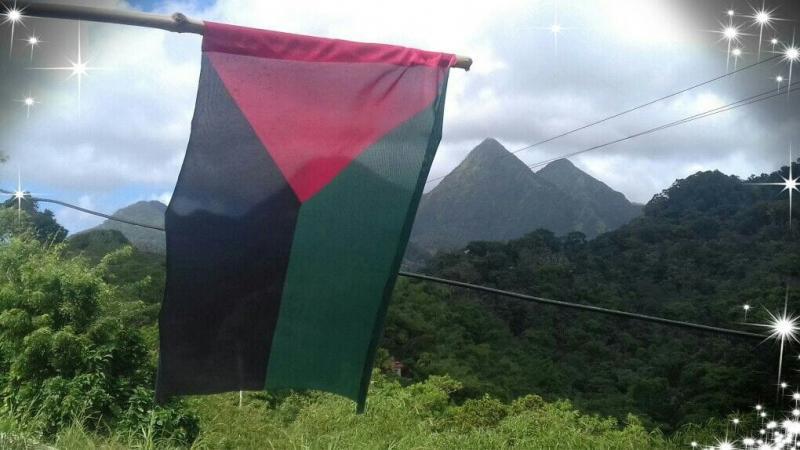 La Martinique ne mérite qu'un drapeau provincial (pour l'instant)