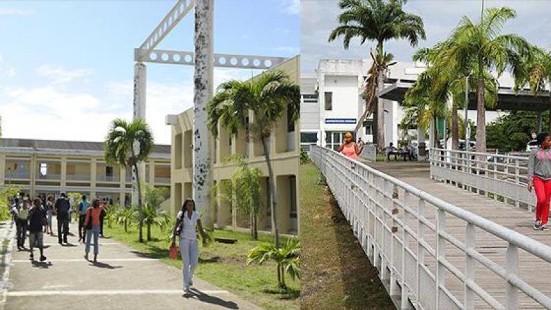 Université des Antilles : motion des agents non-titulaires
