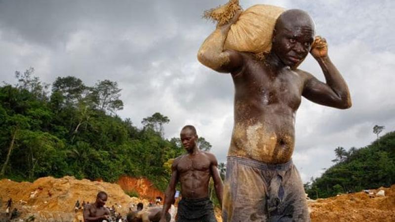 Guyanes : les conséquences écologiques désastreuses de la ruée vers l'or