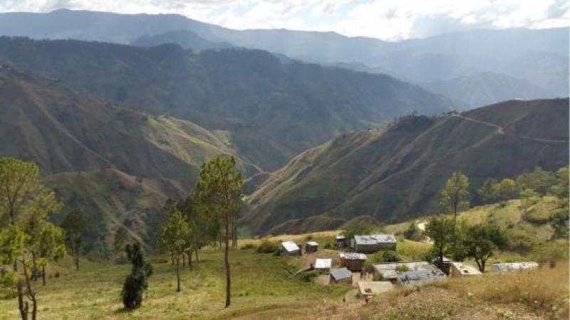 La restauration des forêts indigènes d'Haïti relancera le développement du pays : voici pourquoi