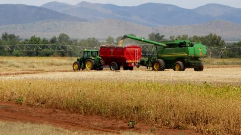"Land expropriation: Why South Africa won't become a ""second Zimbabwe"""