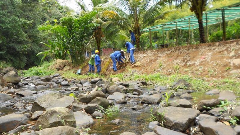 Parc Naturel de Martinique : réunion du Comité syndical extraordinaire