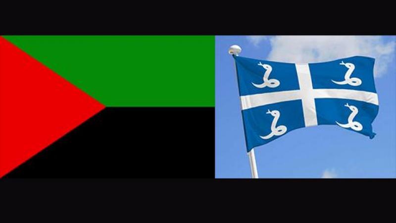 Le drapeau rouge-vert-noir en Martinique : un emblème national ?