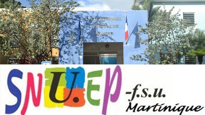 Communiqué de presse du SNUEP FSU Soutien aux Personnels du LPA du Robert.